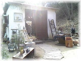 Image463.jpg